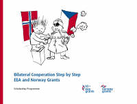 Bilateral Cooperation Step by Step, EEA and Norway Grants (cover page)